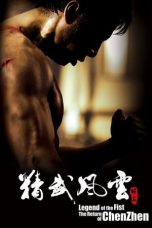 Download Legend of the Fist (2010) Full Movie