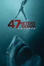 Download Film 47 Meters Down Uncaged (2019) Subtitle Indonesia Full Movie HD