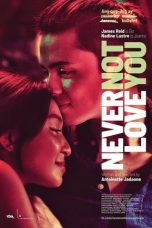 Download Film Never Not Love You (2018) Sub Indo Full Movie Bluray